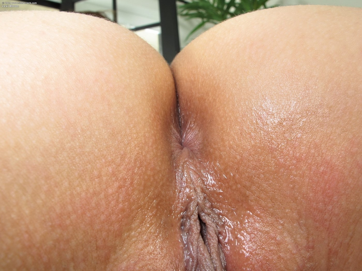 do girls have hairy bums – Other